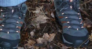 Merrell Moab Mid GTX XCR – Leichte Wanderschuhe im Test