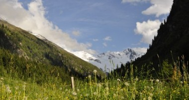 Wanderurlaub in Mayrhofen