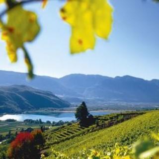 Wandern in Südtirol leicht gemacht – Neue Wander-App hilft bei der Wahl der richtigen Tour