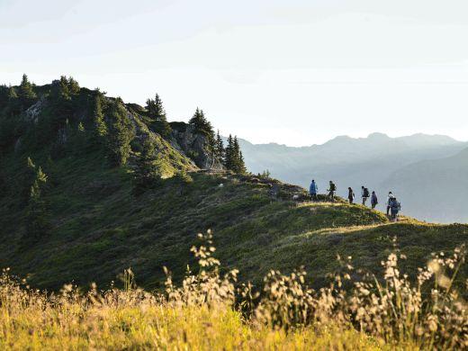 Naturerwachen - Foto: Montafon Tourismus
