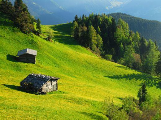 Wandern im Zillertal über saftige Wiesen - Fotocredit: Paul Suerth / Mayrhofen