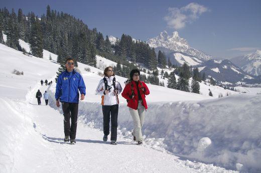 Winterwandern auf dem Höhenweg von Tannheim nach Zöblen, im Hintergrund: Rote Flüh und Gimpel. Bildnachweis: Tourismusverband Tannheimer Tal