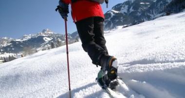 Alpe im Winter – Winterwanderung zur Alpe Stubental