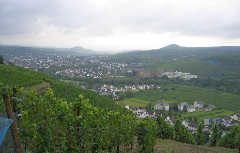 Wandern auf dem Rotweinwanderweg im Ahrtal von Ahrweiler nach Rech