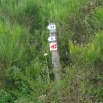 Wanderung im Tal der Feen - Achouffe  019
