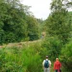 Wanderung im Tal der Feen - Achouffe  020