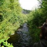 Wanderung im Tal der Feen - Achouffe  023