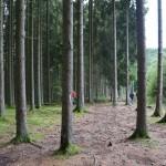 Wanderung im Tal der Feen - Achouffe  049