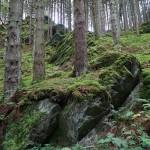 Wanderung im Tal der Feen - Achouffe  076