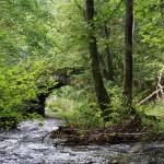 Wanderung im Tal der Feen - Achouffe  079
