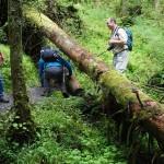 Wanderung im Tal der Feen - Achouffe  098