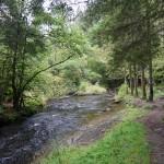 Wanderung im Tal der Feen - Achouffe  106