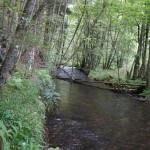 Wanderung im Tal der Feen - Achouffe  112