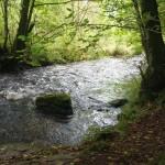 Wanderung im Tal der Feen - Achouffe  114