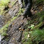 Wanderung im Tal der Feen - Achouffe  116