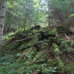 Wanderung im Tal der Feen - Achouffe  117