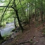 Wanderung im Tal der Feen - Achouffe  120