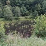 Wanderung im Tal der Feen - Achouffe  127