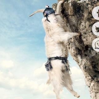 Warum nicht die nächste Wanderung mit der TomTom Bandit filmen?  – Sponsored Video