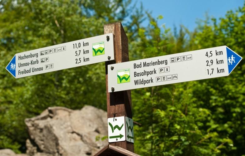Den Westerwald erleben – #bloggerwandern #RLPerleben #WaMaWesterwald