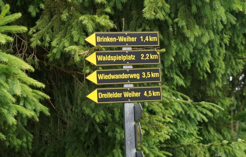 Wandern auf dem Westerwaldsteig #RLPerleben