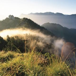 Auszeit für die Seele – Meditatives Wandern in Bayern