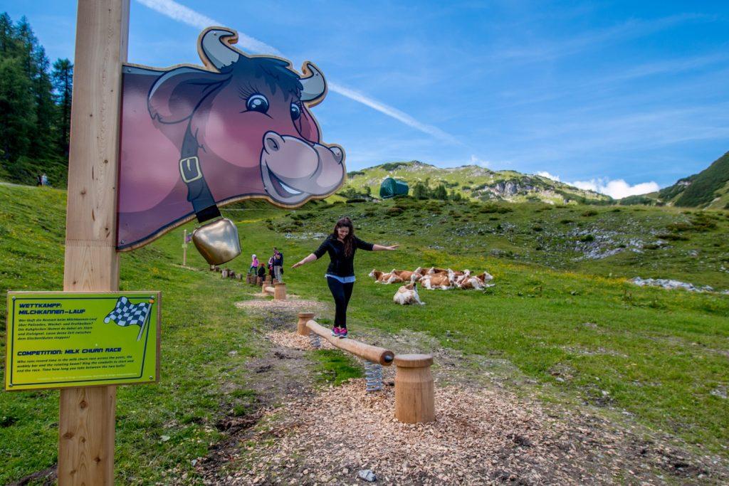 Zauchensee, KUHparKUHr »Kuh-Balanceakt« - Foto: Zauchensee Liftgesellschaft